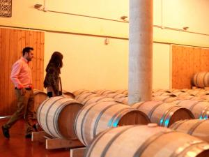 esencia del vino 19
